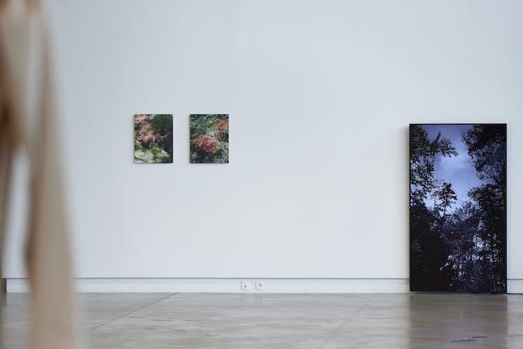 Light BPS22 Exposition LETTRES DE MISARCHIE Charleroi Chicoutimi Leslie Artamonow 3